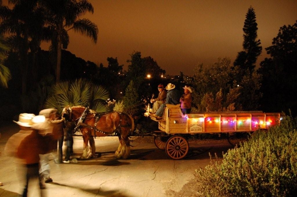 Del mar fairgrounds presents… holiday of lights